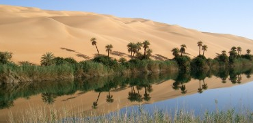 An oasis in the midst of sand dunes