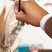 An artist in KwaZulu Natal paints an intricate picture of wildlife.
