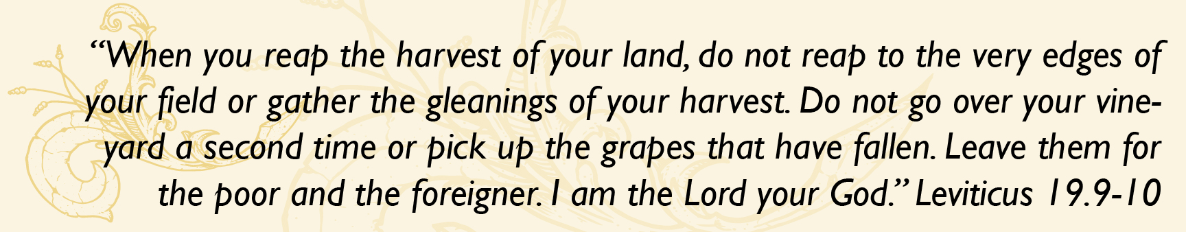 """When you reap the harvest of your land, do not reap to the very edges of your field or gather the gleanings of your harvest. Do not go over your vineyard a second time or pick up the grapes that have fallen. Leave them for the poor and the foreigner. I am the Lord your God."" Leviticus 19.9-10"